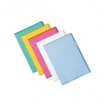Esselte  395484100 Polipropilene PP Trasparente cartella - Esselte - 395484100