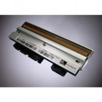 Zebra  Kit Printhead 300 dpi ZM600 testina stampante 79804M - Zebra - 79804M